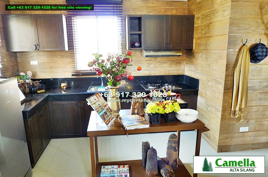 Drina House for Sale in Camella Alta Silang
